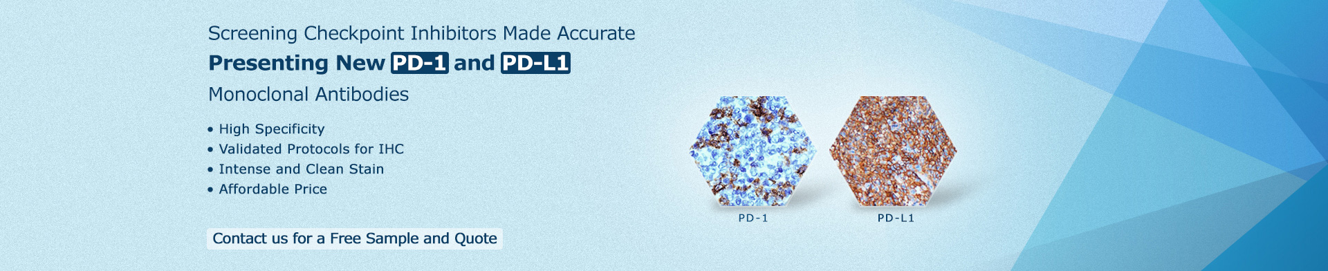 PD-1 and PD-L1 monoclonal antibodies for immunohistochemistry (IHC) biomarker screening